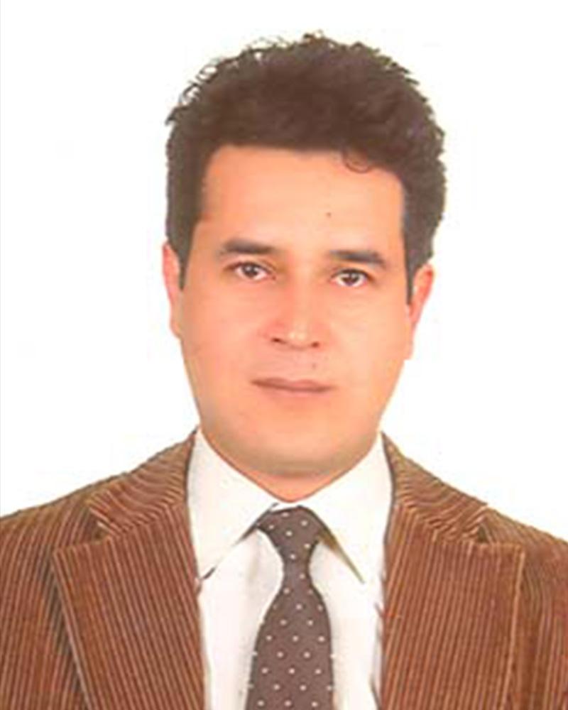 Doç. Dr. Ali ERSOY (Eğitmen)